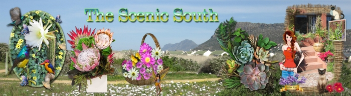 the scenic south