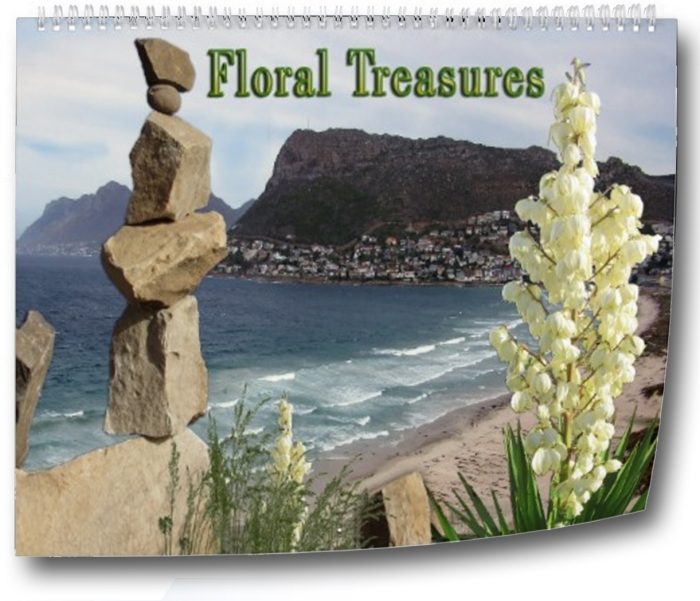 Floral Treasures of the Weastern Cape
