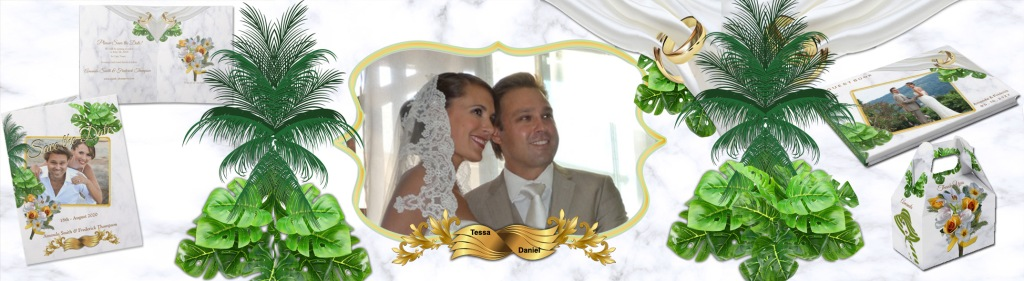 This image has an empty alt attribute; its file name is tessa-and-daniel-wedding-banner.jpg